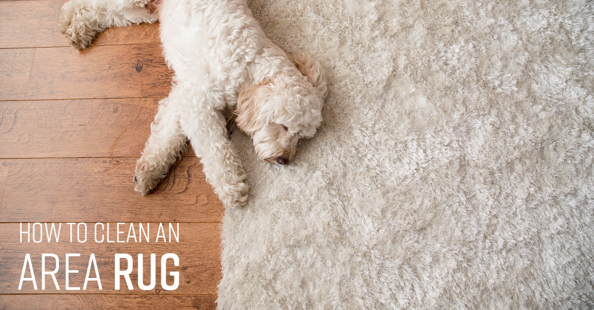 Picture of: How To Clean An Area Rug Simple Green