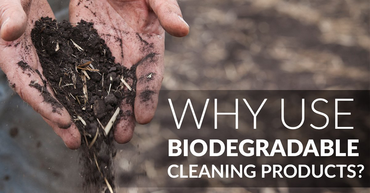 Understanding Biodegradable Cleaning Products